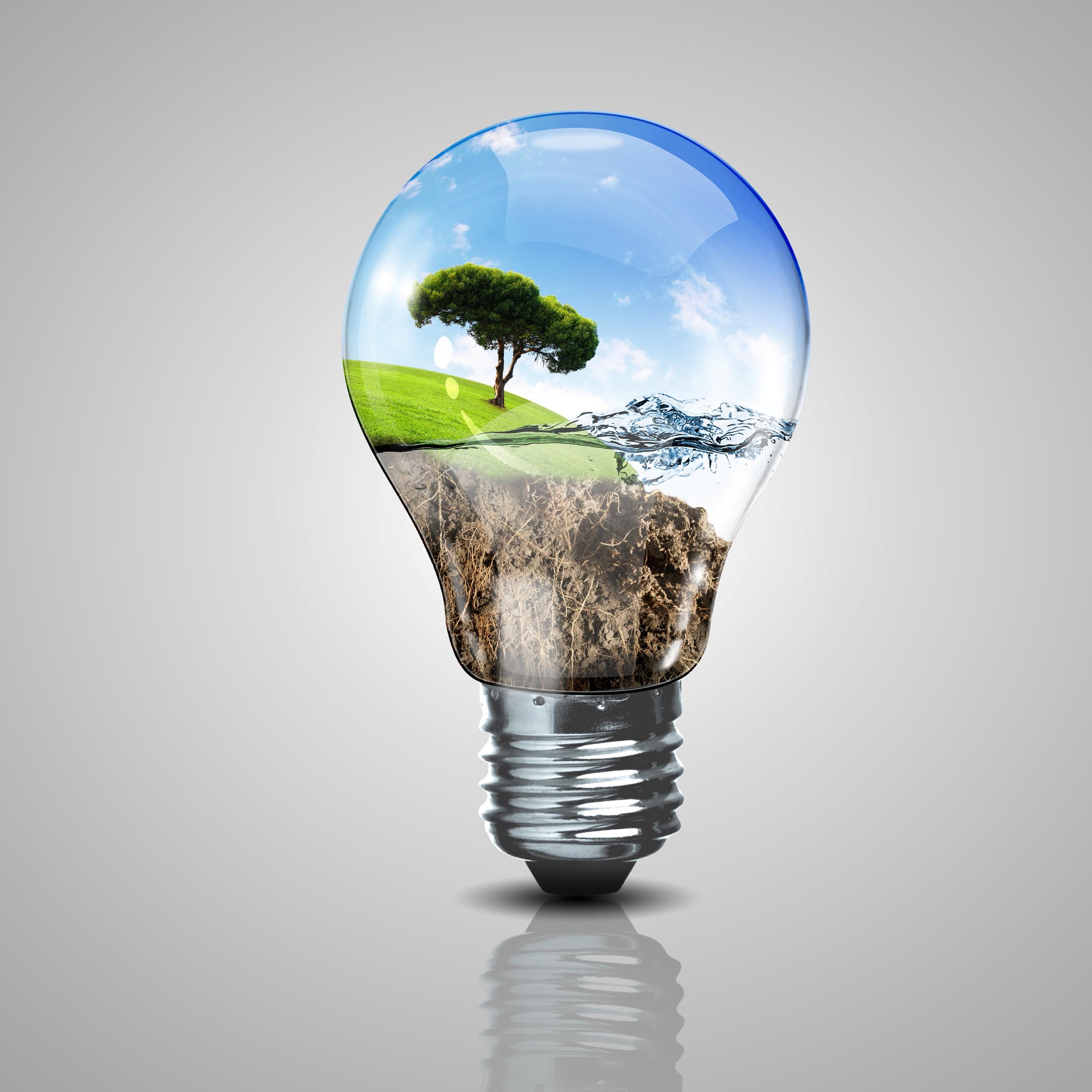 Strategie energetyczne    -   która koncepcja jest słuszna ?